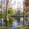 View from Trail - Cypress Gardens, Moncks Corner, SC