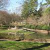 Cascading Waterfall - Glencairn Garden, Rock Hill, SC