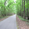 Some Trails Are Paved - Great Swamp Sanctuary - Walterboro, SC