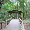 Sheltered Place to Rest - Great Swamp Sanctuary - Walterboro, SC