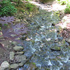 Stream in the Woodlands - Hatcher Garden and Woodland Preserve - Spartanburg, SC