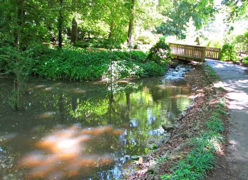 Pond on Other Side of Bridge - Hatcher Garden and Woodland Preserve - Spartanburg, SC<br /> Lots of frogs!