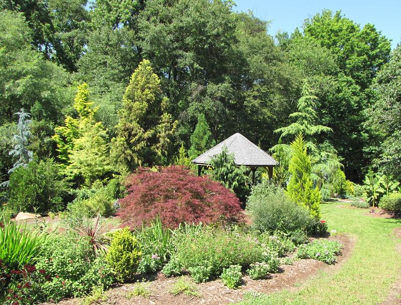 Walking the Paths - Hatcher Garden and Woodland Preserve - Spartanburg, SC