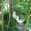 Another Stream with Waterfall - Hatcher Garden and Woodland Preserve - Spartanburg, SC