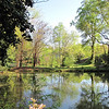 Pond Reflections at Kilgore-Lewis House Gardens - Circa 1838 - Greenville, SC