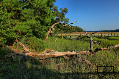 Lowcountry on the May River  © Copyright m2 Photography - Michael J. Mikkelson 2009. All Rights Reserved. Images can not be used without permission.