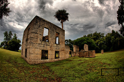 Palmetto Tree shadowing the George Edwards house of the Tabby Ruins on Spring Island, South Carolina  © Copyright m2 Photography - Michael J. Mikkelson 2009. All Rights Reserved. Images can not be used without permission.