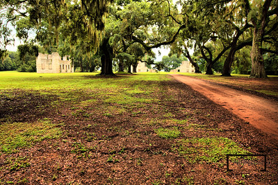 Road leading under a canopy of Live Oaks towards the Tabby Ruins on Spring Island, South Carolina  © Copyright m2 Photography - Michael J. Mikkelson 2009. All Rights Reserved. Images can not be used without permission.