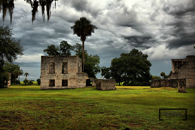 Palmetto tree in the clouds in the Tabby Ruins on Spring Island, South Carolina  © Copyright m2 Photography - Michael J. Mikkelson 2009. All Rights Reserved. Images can not be used without permission.
