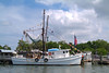 Shrimp boat along South Carolina island.