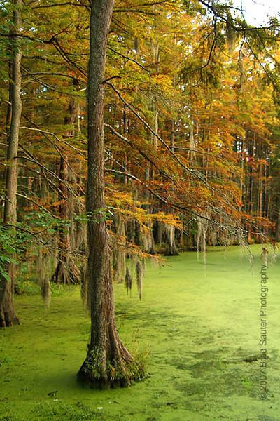 Sumter, South Carolina.