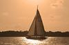 Sailboating at sunset along Hilton Head Island, South Carolina.
