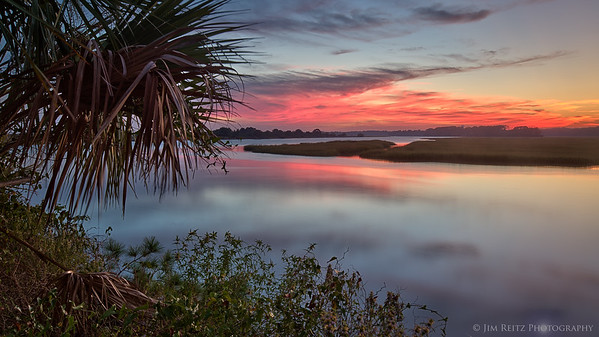 Palmetto & sunset along the Kiawah River, South Carolina