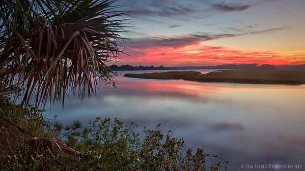 Palmetto & sunset along the Kiawah River, South Carolina