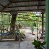 House Tour, Ho Chi Minh, Vietnam