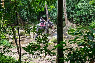 namuang Safari Park - Elephant Ride