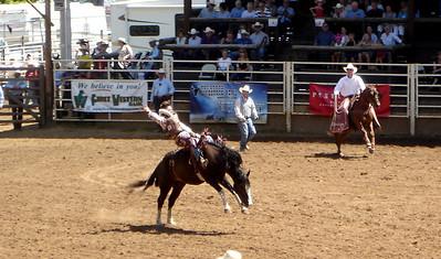 South Dakota 2008