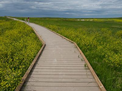 Prairie Wind overlook
