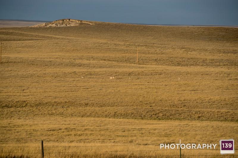 South Dakota Road Trip