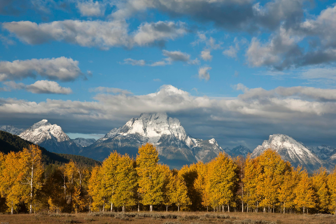 Teton Aspens. <br /> <br /> The weather finally made a turn for the better and I was looking forward to a week of hiking and pursuing my photographic endeavors, but alas the government shut down this day and we were told to leave the park.