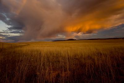 Black Hills storm