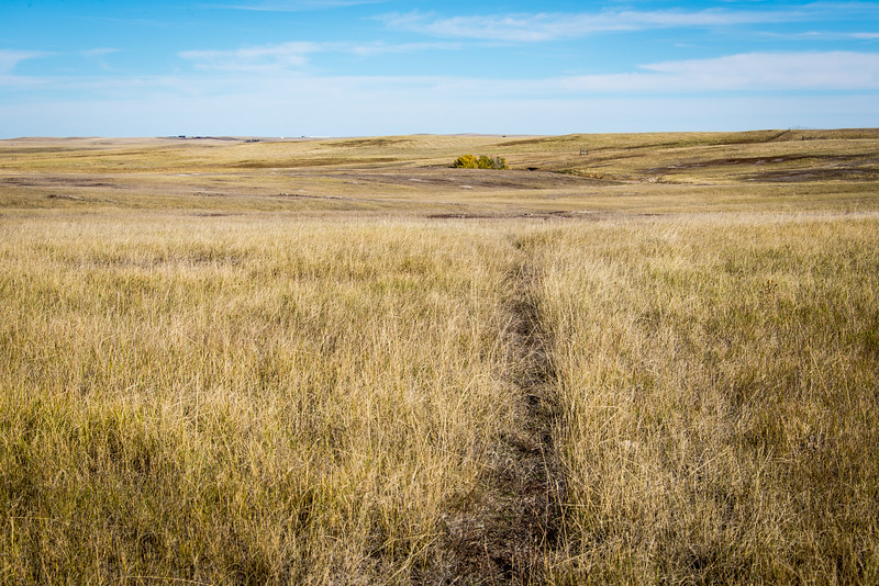 Heading out into Roberts Prairie Dog Town in Badlands National Park, South Dakota - October 2014