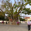 Summer Palace, Ayutthaya Thailand