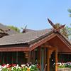 Roof, Doi Tung Royal Palace