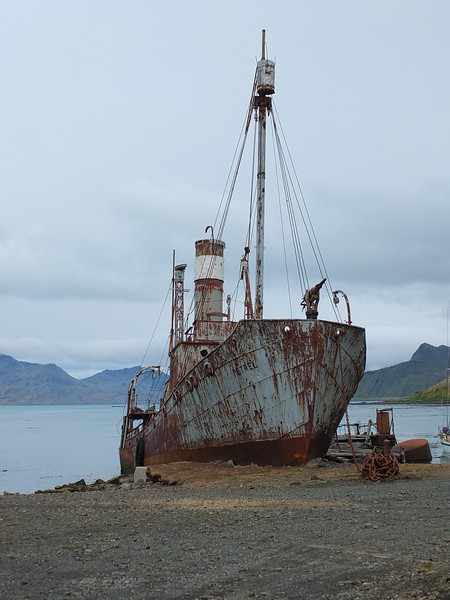 The rusty ruins of the Petrel, a whaling ship