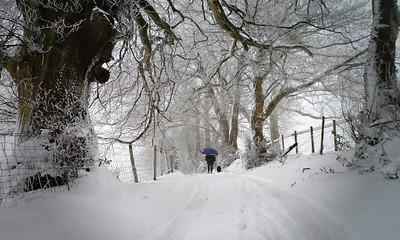 Heavy snowfall on Welsh Newton Common
