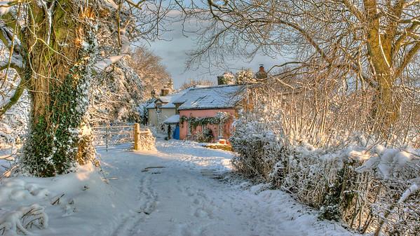 Winter Scene, Welsh Newton Common