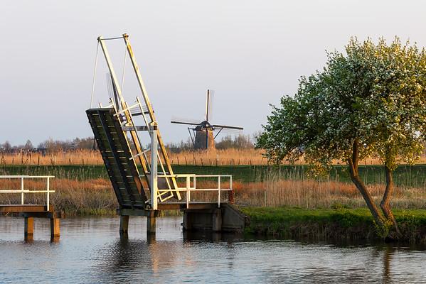 Idyllic landscape near Kinderdijk at sunset, South Holland, Netherlands