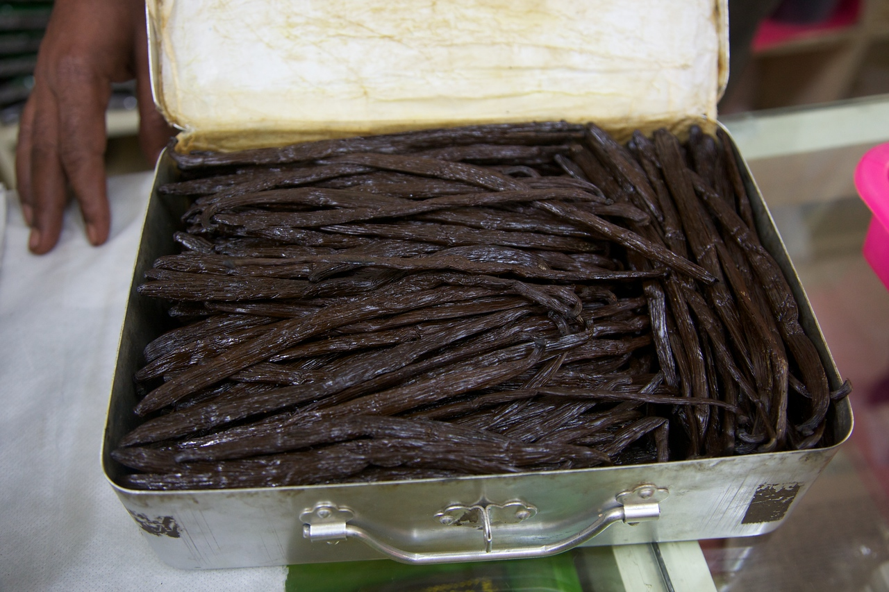 Vanilla.  Kerala is knows for its spices.  They produce every kind of spice you can think of.