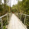 Macpherson Creek swing bridge West Coast Wilderness Trail