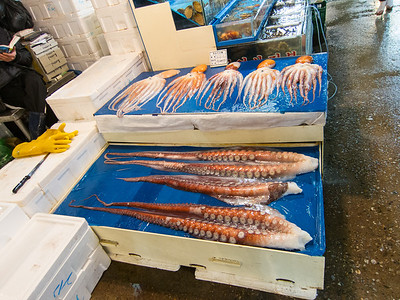 Octupus for sale at Noryangjin Fish Market in Seoul.