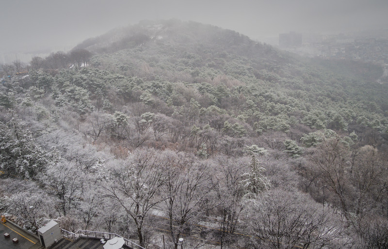 No View of Seoul on this Snowy Day