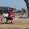 Suwon, fortress city:  the show featuring 24 martial arts