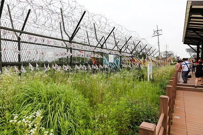 DMZ - South Korea