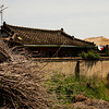 <p>Brushwood, Hahoe Folk Village, Andong, South Korea</p>