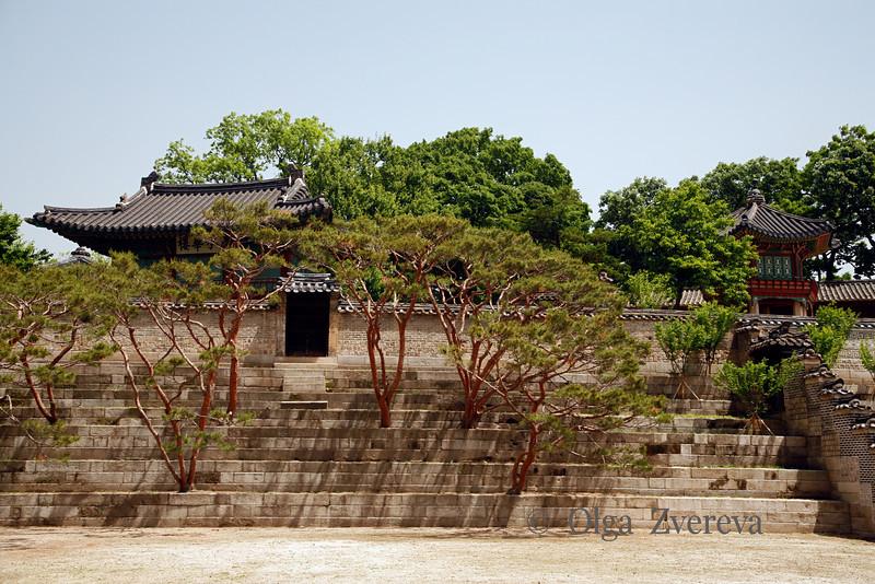 <p>Changdeok Palace, Seoul, South Korea</p>