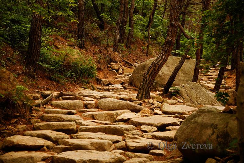 <p>Stone Path, Mt.Namsan area, Gyengju, South Korea</p>