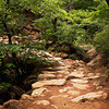 <p>Stone Path, Mt.Namsan area, Gyengju, South Korea</p>