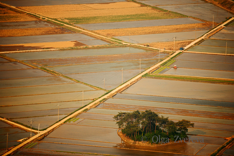 <p>Rice fields from the top of the mountains. Mt.Namsan area, Gyengju, South Korea</p>