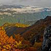 Autumn Misty Mountains