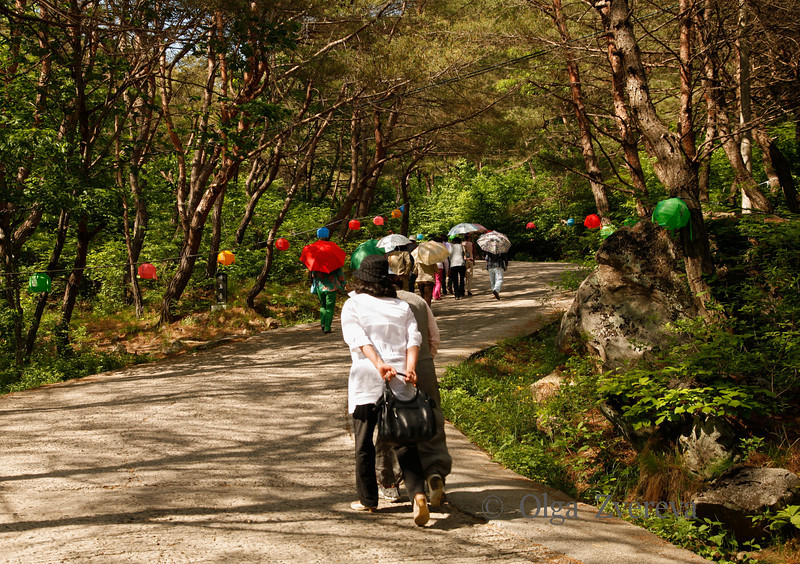 <p>Visitors. Bongjeongsa Temple, Andong, South Korea</p>