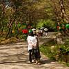 <p>Visitors. Bongjeongsa Temple, Andong, South Korea</p>