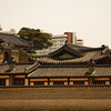 <p>Changdeok Palace, Seoul, South Korea</p>