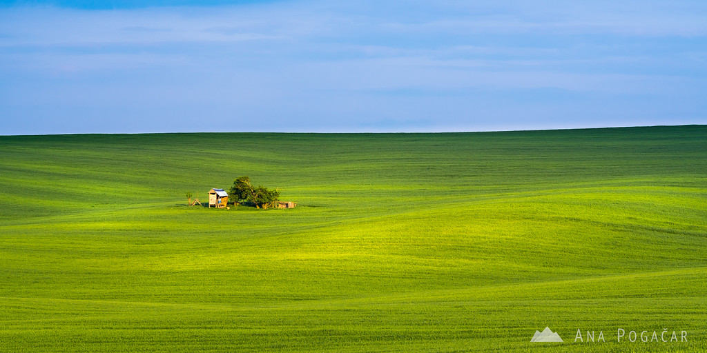 The rolling fields of South Moravia