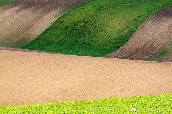 Rolling fields of South Moravia