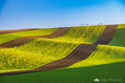 South Moravia 2016